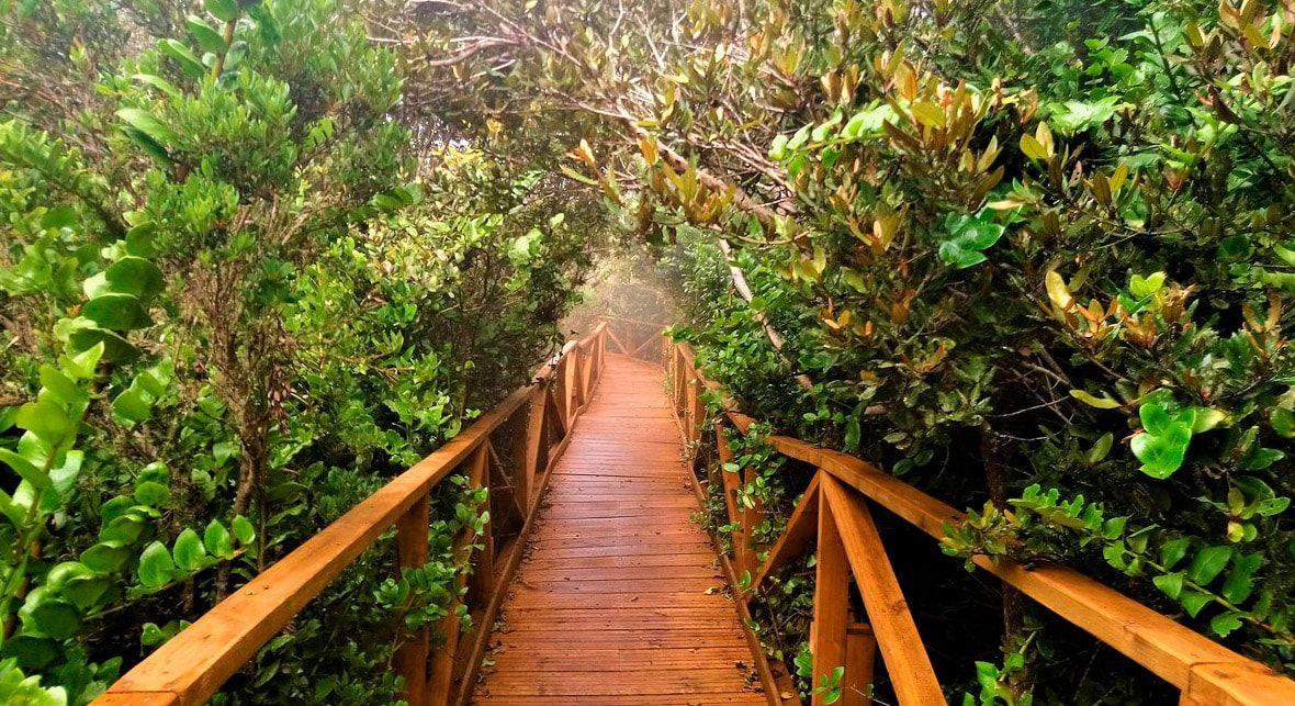 Foto Tour Parque Fray Jorge