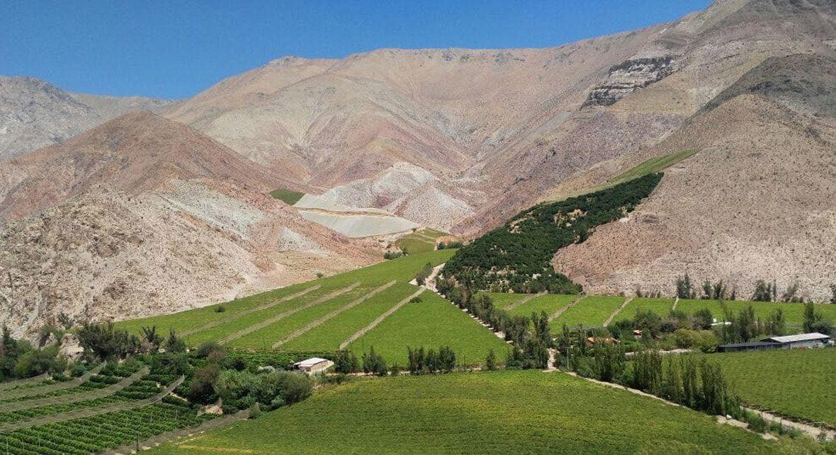 Tour Valle del Elqui 2020